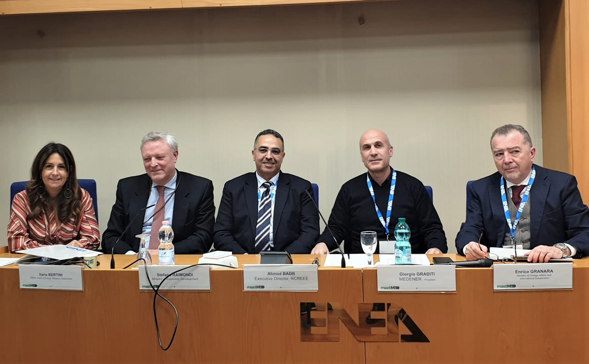 Investment climate for EE and RE: an opportunity for the sustainable development of the Mediterranean Region